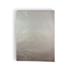 12F (290wx380h) Brown Paper Bag