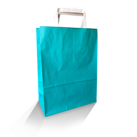 XS (220w+100x290h) Teal Solid Paper Carry Bag