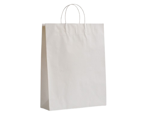 Small (250+100x330h) White Twisted Paper Handle Paper Bag