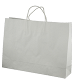 Small Btq (350+110x250h) White Twisted Paper Handle Paper Bag